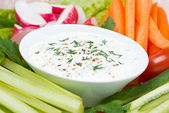 Yoghurt sauce with mustard, herbs and fresh vegetables, close-up — Stock Photo