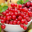 Fresh red currant, berries and fruits, close-up — Stock Photo