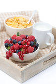 Fresh berries, corn flakes and milk, close-up — Stock Photo