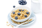 Homemade muesli, blueberries and milk, horizontal — Stock Photo