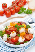 Salad with mozzarella, fresh herbs and colorful cherry tomatoes  — Stock Photo