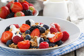 Breakfast with fresh berries, yogurt and homemade muesli — Stock Photo