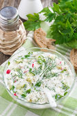Cold soup with fresh vegetables and kefir (okroshka) in a bowl — Stock Photo
