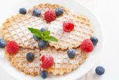 Belgian waffles with berries on white wooden table, close-up — Stock Photo