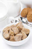 Brown sugar closeup, cookies and crockery for teatime — Stock Photo