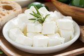 Fresh feta cheese, close-up — Stock Photo