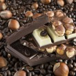 Three kinds of chocolate and coffee beans and hazelnuts - Stock Photo