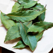 Bay leaves on light  background — Stock Photo