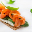 Salted salmon on crispy bread with cheese and spinach — Stock Photo #25621493