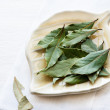Stock Photo: Bay leaves on plate over light background