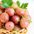 Fresh gooseberries in basket over light background — Stock Photo