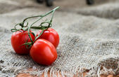 Cherry tomatoes over rustic background — Stock Photo