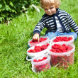 Lovely boy toddler with ripe red raspberries in buckets — Stock Photo