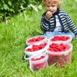 Adorable boy toddler with ripe red raspberries in buckets — Stock Photo