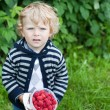 Sweet blond toddler with red ripe raspberries on organic farm - Foto Stock