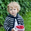 Cute toddler with red ripe raspberries on organic farm - Foto Stock