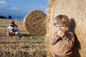 Adorable toddler eating apple on golden field — Stock Photo