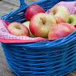 Basket with fresh red and yellow apples in autumn garden — Stock Photo #13288593