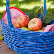 Basket with fresh red and yellow apples in autumn garden - Stock Photo