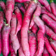 Fresh healthy bio radish on German farmer agricultural market - Stock Photo