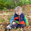 Stock Photo: Little toddler boy in autumn park