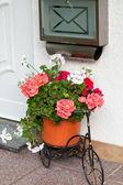 Postvak en fiets versierd met bloemen — Stockfoto