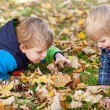 Two little toddler boys in autumn park — Stock Photo