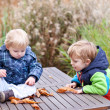 Two Little toddler boys playing with chestnuts in autumn park — Stock Photo