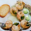 Snails as gourmet food with bread - Stockfoto