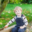 Royalty-Free Stock Photo: Little toddler boy playing in autumn garden