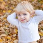 Little toddler boy in autumn park — Stock Photo #13868719