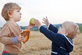 Due ragazzini bambino giocando sul campo di paglia — Foto Stock
