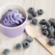 Frozen creamy ice yoghurt with whole blueberries — Stock Photo #14966077