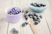 Frozen creamy ice yoghurt with whole blueberries — Stock Photo
