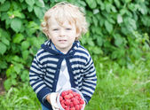 Niño pequeño con cubo de frambuesa — Foto de Stock