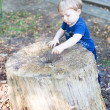 Little toddler boy of one year in summer forest — Stock Photo #18762491