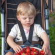 Adorable toddler with bowl strawberries on organic farm — Stock Photo #18763599