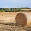Stock Photo: Hay bales on the field after harvest, Germany