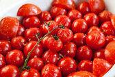 Tomate grelhado fresco com alho e ervas — Foto Stock