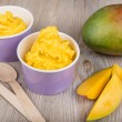 Frozen creamy ice yoghurt with fresh mango — Stock Photo #20274897