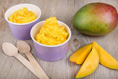 Frozen creamy ice yoghurt with fresh mango — Stok fotoğraf