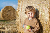 Little toddler eating apple with a big hay bale on field — Stock Photo