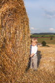 Little boy on goden hay field — Stock Photo
