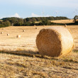 Hay bales on the field after harvest, Germany — Stock Photo #25260897