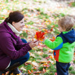 Little toddler boy and young mother in the autumn park — Stock Photo #28418673