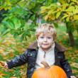 Stock Photo: Little toddler with big orange pumpkin in garden