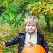 Little toddler with big orange pumpkin in garden — Stock Photo #28953937