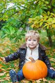 Little toddler with big orange pumpkin in garden — Stock Photo