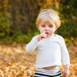 Little toddler boy in autumn park — Stock Photo #29728151
