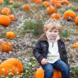 Little toddler boy on pumpkin field — Stock Photo #30577429